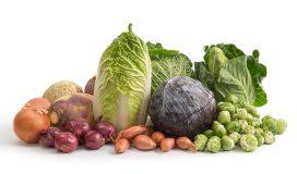 vitaminreiche Ernährung Winter