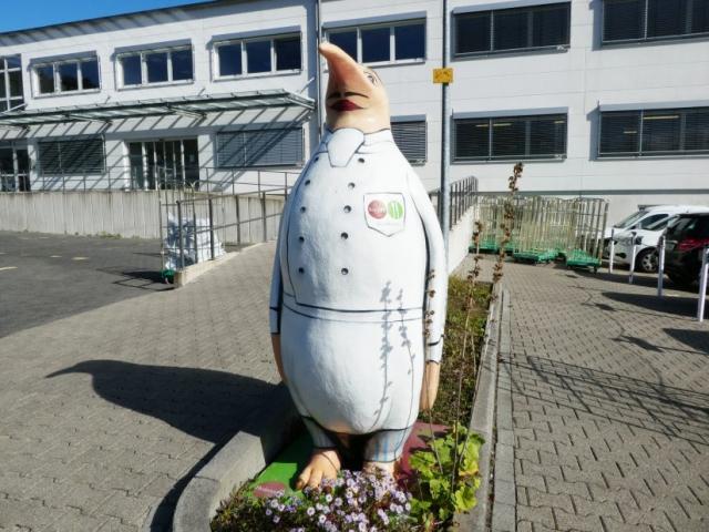 vitesca-pinguin-simon-draussen-im-derken
