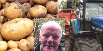 vitesca-Kartoffeln-butterweck