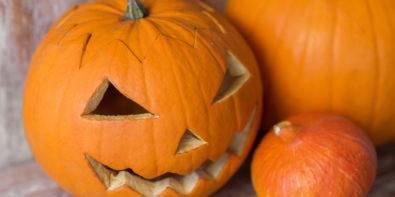 vitesca-blog-halloween-kürbis-AdobeStock_klein